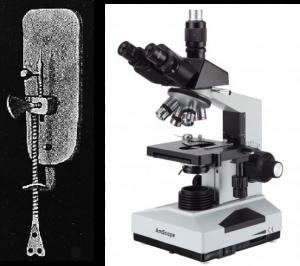 http://www.ucmp.berkeley.edu/history/leeuwenhoek.html     http://www.amscope.com/40x-2000x-lab-clinic-vet-trinocular-microscope.html?