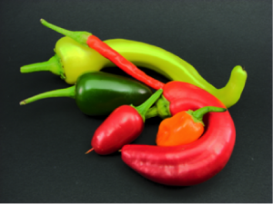 https://en.wikipedia.org/wiki/Capsicum#/media/File:Arrangement_of_jalape%C3%B1o,_banana,_cayenne,_chili,_and_habanero_peppers.jpg
